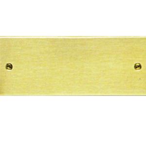 Targa da porta rettangolare in ottone satinato con bordi lucidi